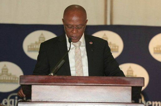MEC for Agriculture and Rural Development Mr Oupa Khoabane delivered the Budget Vote Speech at Tweeling